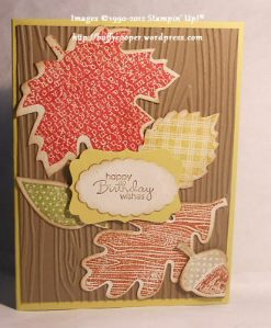 Wonderfall, Stampin' Up!, Holiday, Birthday, Sizzix, Big Shot, Autumn Accents