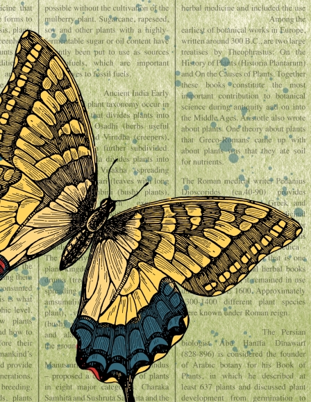 Swallowtail, Stampin' Up!, MDS2, My Digital Studio, Easter
