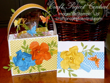Birthday Gift Box & Card, Craft Project Central, Chris Galbraith, Stampin' Up!