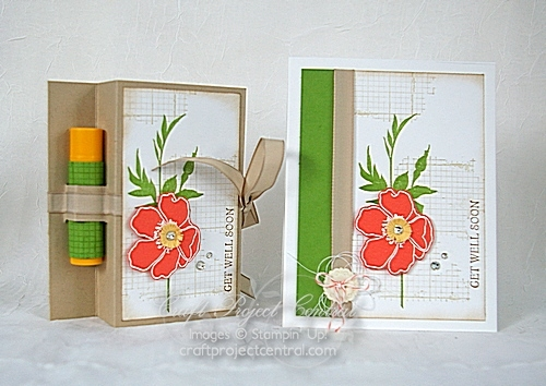 Craft Project Central, Stampin' Up!, get well