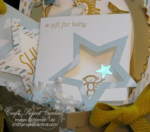 Berry Basket Gift Set for Baby SP (1)