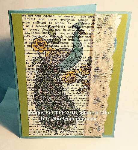 Perfect Peacock, Stampin' Up!, Blendabilities