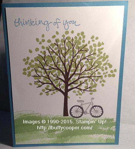 Sheltering Tree_Bike