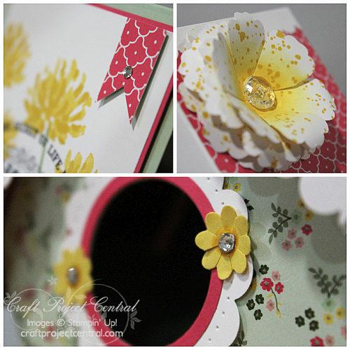 Bird House Gift Box & Card SP