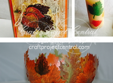 Vintage Leaves, Craft Project Central, Stampin' Up!