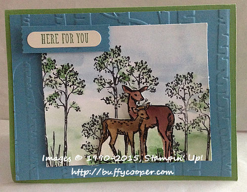 In the Meadow, And Many More, Stampin' Up!