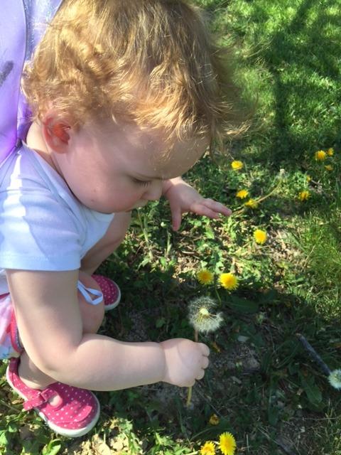 Amelia - Fairy Princess 2