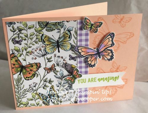 Stampin' Up!, Butterfly Gala