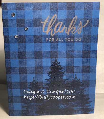 Stampin' Up!, Friendly Expressons, Buffalo Check, Winter Woods