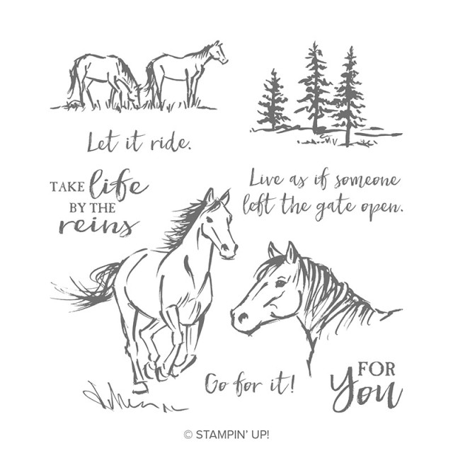 Let It Ride, Stampin' Up!