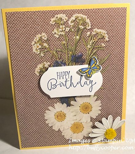 Special Celebrations, Daisy Lane, Stampin' Up!