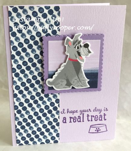 Pampered Pets, Stampin' Up!