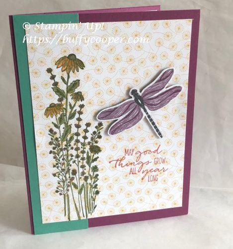Dragonfly Garden, Dandy Garden, Stampin' Up!,