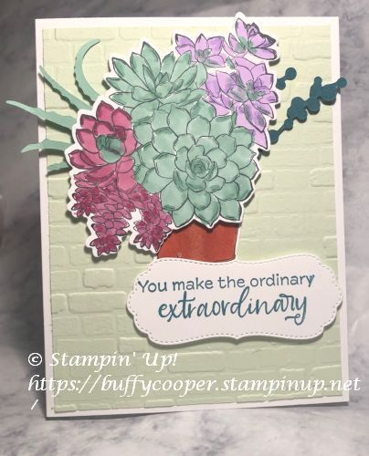 Simply Succulents, Stampin' Up!